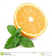 Orange Mint seeds Organic / Herb / Medicinal / Rare / Aroma (20 seeds)  V-013
