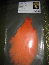 VAINER del premio AA Grade PRO cassettoni corallo piena medio gallo Collo CAPE Soft