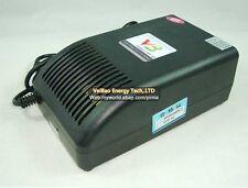 110V/220V outpout 60V 5A Lfp LiFe Lifepo4 Battery Packs Quick Charger (20S=73V)