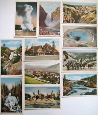 Group Of 11 Yellowstone Park Scenic Haynes Antique Postcards Unposted/Posted