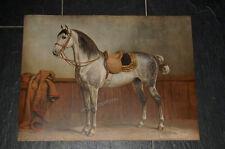 RICHARD SCHOENBECK LITHOGRAPHIE LIPIZZANER / LIPPIZANER PFERD 1900 OTTO EERELMAN