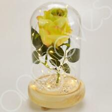 Mixed Lemon & Lime Handmade Enchanted Rose in Glass Dome Bell Jar With LED Light