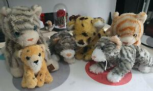 Large bundle of cat soft toys TY
