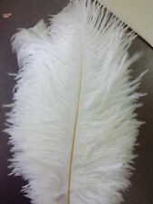 20 Pcs White Natural Ostrich Feathers 12-14 Inch for Wedding Decorations