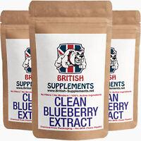 BlueBerry Extract Caps 25% OPC Antioxidant Anti Inflammatory UK 3 Month Supply