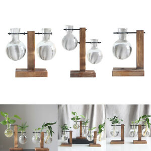 3x Table Desk Bulb Glass Hydroponic Vase Flower Plant Pot& Wood Tray Home Decor