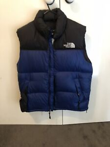 the north face vest