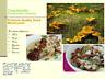 Chanterelle - Cantharellus Cibarius, Premium Quality Dry Mushrooms