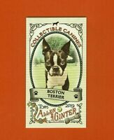 2019 Topps Allen & Ginter Collectibles Canines Mini Boston Terrier CC-24