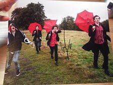 Palma Violets band signed autograph on 8x10 photo IP