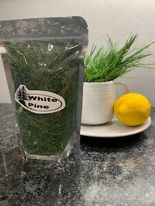 Fresh Eastern White Pine Needles Organic Wild Suramin 1/4Lb + Reusable Tea bag!