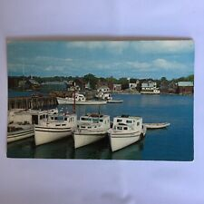 Fishing Boats In Harbour St. Andrew's New Brunswick Unposted Postcard