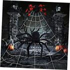 Giant Spider Web Halloween Halloween Giant Spider Web for White