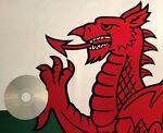 Red Dragon Discs