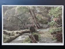 Derbyshire: MILLERS DALE by the River c1942 by Photochrom Co. Ltd 78482