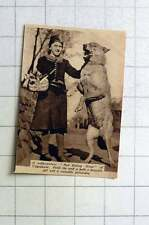 1938 Yugoslavian Red Riding Hood With Poldi The Wolf Valuable Police Dog