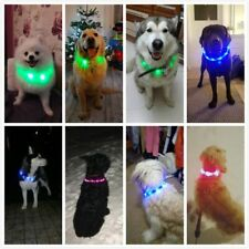 Glowing Dog Collar Pet LED Light Night  Flashing USB Rechargeable Custom Length