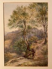 Vintage Original Watercoukr Attrib K Bickham Hilly Path Lake District? Box Hill?