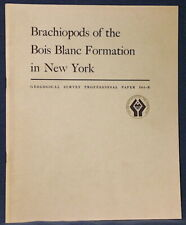 Usgs Brachiopods of New York, Bois Blanc Formation, Vintage 1968, Scarce Report