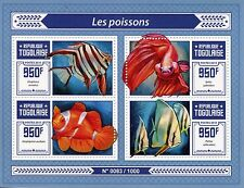 Togo 2015 MNH Fishes 4v M/S Siamese Fighting Fish Ocellaris Clownfish Stamps