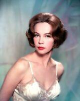 Leslie Caron Fine Art Retro Vintage Old Photo Glossy 10*8 inch Q051
