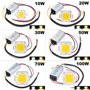 LED Driver + COB Chip 100W 50W 30W 20W 10W Power Supply Transformer Bulb Lights