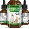 Natural ANTIBIOTICS for Dogs / ANTIBIOTICS Alternative for Pets/ Kennel Cough /