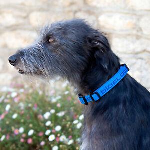 Bioflow Magnetic DOG COLLAR (BLUE) - Natural Healing!