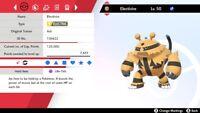 Ultra Shiny 6IV EV Trained Adamant Vital Spirit Electivire Pokemon Sword/Shield