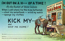 Virginia City NV Bucket of Blood Saloon H___ of a Time! Kick My.. Postcard @1950