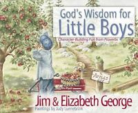 God's Wisdom for Little Boys: Character-Building Fun from Proverbs: By Jim Ge...
