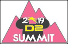 2019 Cheerleading D2 Summit Bag Pins for Cheer Bag Pink No Bow Cheer Team Gift