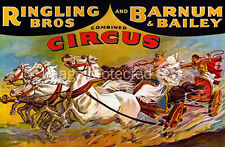 Chariot Riders Ringling Bros And Barnum Bailey Vintage Circus Poster 18x24