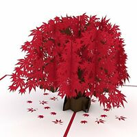 Japanese Maple 3D Pop Up Card Anniversary Greeting Birthday Wedding Mother Day
