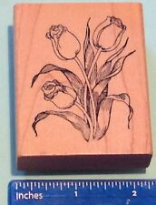TULIPS ON PLANT rubber stamp by Delafield