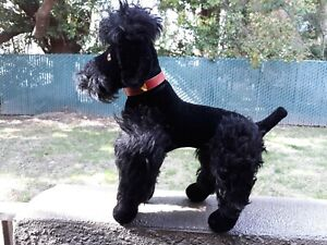 """Adorable Large STEIFF MOHAIR PLUSH Black French Poodle Jointed Legs 17"""""""