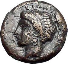 SYRACUSE in SICILY 343BC Rare Nymph Arethusa Pegasus Ancient Greek Coin i47978