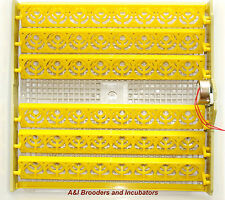 220V for European Incubator AUTOMATIC 48 Eggs Chicken Turner Tray with motor NEW