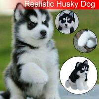 Realistic Husky Dog Simulation Toy Dog Puppy Lifelike Stuffed Companion Toy x 1