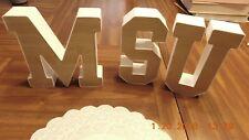 "Large 6""  Plastic Letters MSU"