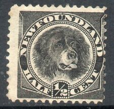 Newfoundland: 1894 Newfoundland Dog ½c. SG 59 unused