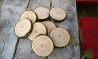 5 x Baumscheibe, Holzscheibe, 12 x 3 cm, Esche