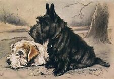 Scottish & Fox Terrier Dog 1930's by Lucy Dawson Large New Blank Note Cards