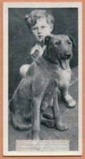 Irish Terrier With Young Child 1930s Ad Trade Card