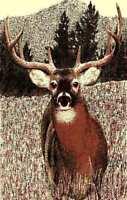 BUCK DEER 5X8 ANIMAL RUG FOR THE HOME HUNTING/CABINS