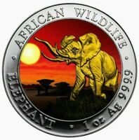 2016 AFRICAN ELEPHANT AT SUNSET RUTHENIUM 24K GOLD GILDED 1oz .999 Silver Coin
