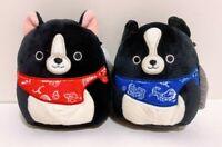 "Set of 2 Kellytoy Squishmallows Tommy Teddy Black Dogs 5"" Mini Plush Doll Toy"