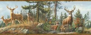 Wallpaper Border Whitetail Deer in Forest Pine Trees Mountains Faux Wood Trim