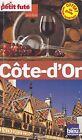 CÔTE-D'OR ( BOURGOGNE) - PETIT FUTE - GUIDE DE VOYAGE 2013/14 - LIVRE 100% NEUF