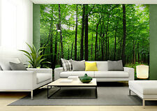 BIG Wall Mural Photo Wallpaper GREEN MYSTERY FOREST TREES Home Decor Art 360x254